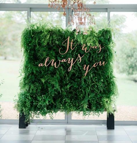 esküvői kreatív fotóhátterek - élő zöld háttér beltér